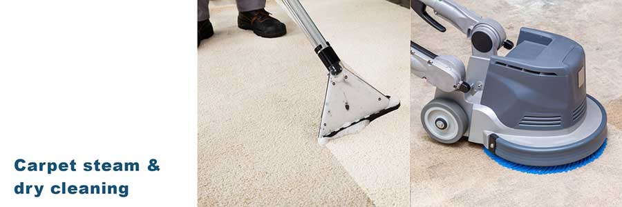 Carpet Steam and Dry Cleaning Services